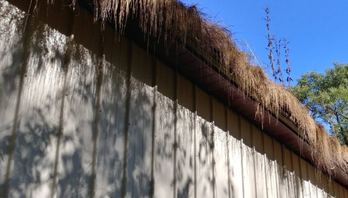 Gutter Cleaning Illinois Valley House Cleaning Services